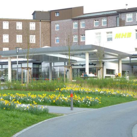 Auf diesem Bild sieht man eine Wiese mit Narzissen die blühen. Im Hintergrund sieht man das Krankenhaus.