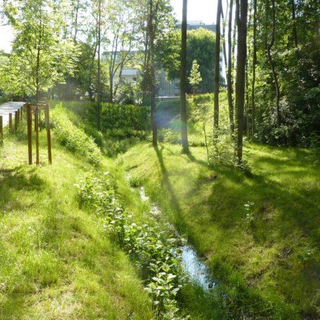 Auf diesem Bild sieht man mittig einen kleinen Bach. Rechts und links von ihm geht eine kleine Böschung hoch und es sind Bäume gepflanzt. Im Hintergrund sieht man ein helles Gebäude.