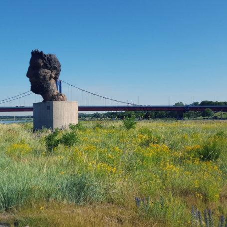 Auf diesem Bild sieht man eine Statue von einem Kopf mitten auf einer Wiese an der Mercatorinsel. Der Kopf ist der eines Mannes. Links an der Statue vorbei verläuft ein befestigter Weg der zur Brücke im Hintergrund führt. Im Hintergrund sieht man ebenfalls eine Fabrik mit großem Schornstein.